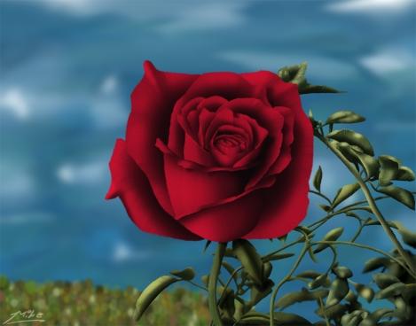 Rose by Lake